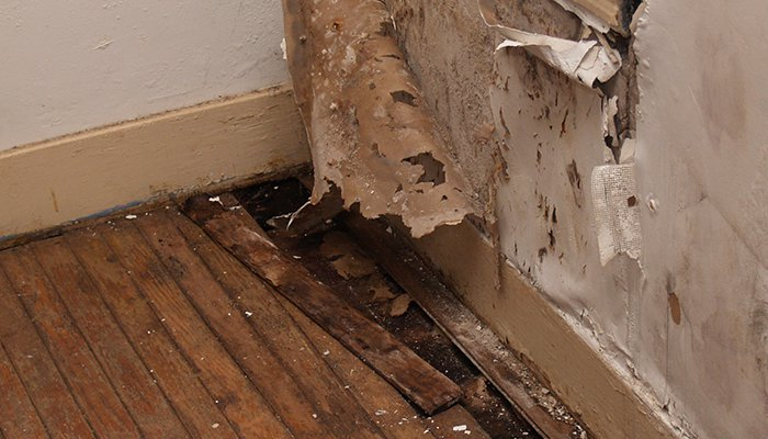 Flood Damage Cleaning